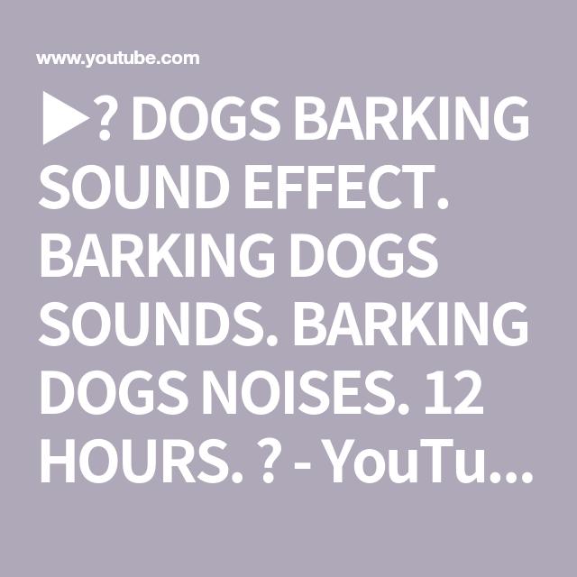 Dogs Barking Sound Effect Barking Dogs Sounds Barking Dogs Noises 12 Hours Youtube Dog Noises Dog Sounds Dog Barking