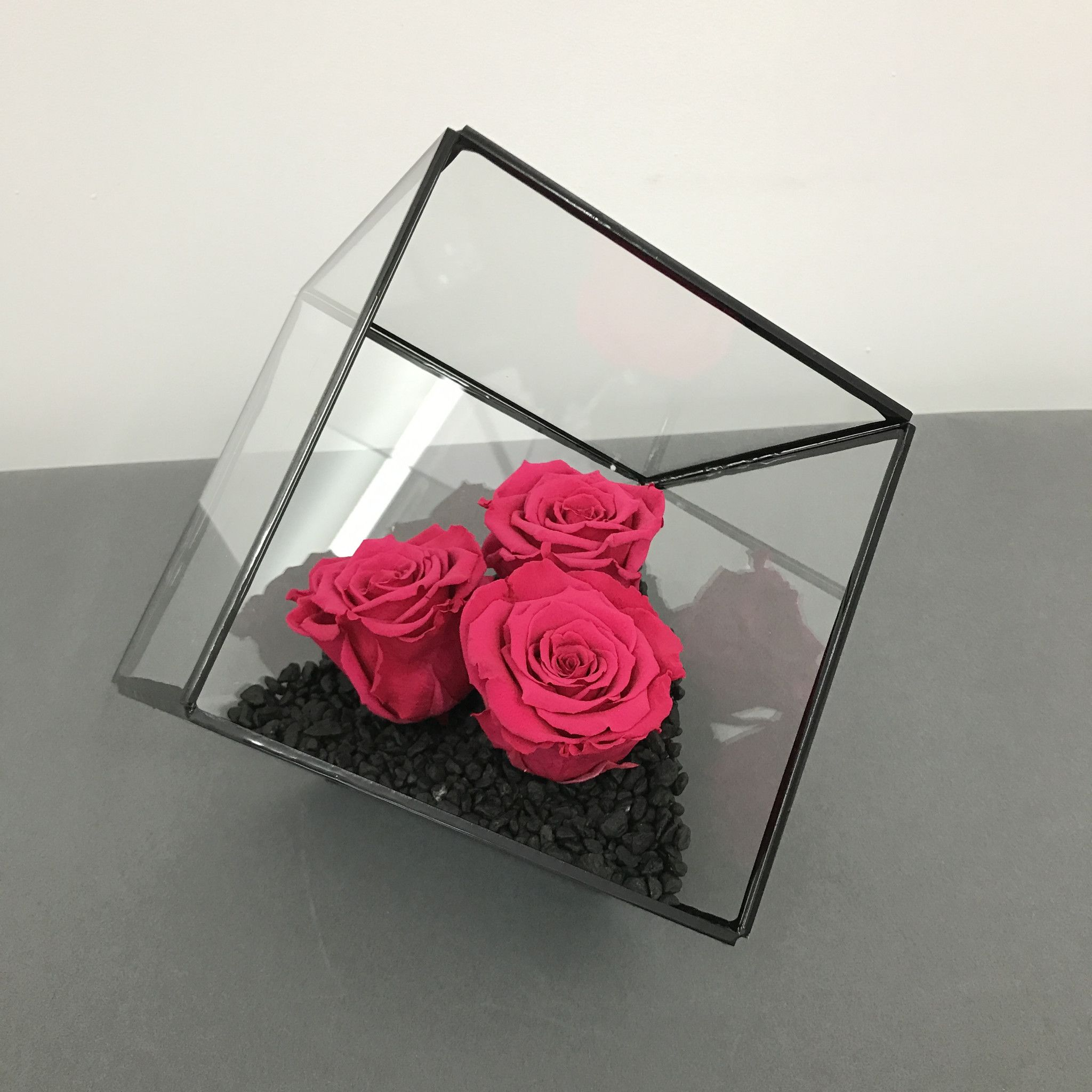 Terrarium Mini Rose Garden is part of Mini Rose garden - Three long lasting, preserved roses of your chosen color inside a stunning, 6 5 inch, metal frame terrarium  These real roses have been carefully conditioned to replace water with glycerin, which allows them to look beautiful for months  They don't like water or direct sunlight    Each arrangement is custom designed based on your rose color and terrarium frame finish preferences