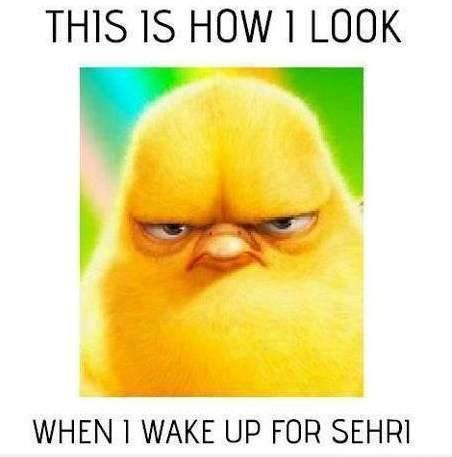 When I Wake Up For Sehri Facebook Pictures Funny Pictures Funny Quotes Funny Jokes Photos Images Pics Ramadan Quotes Funny Qoutes Funny Quotes