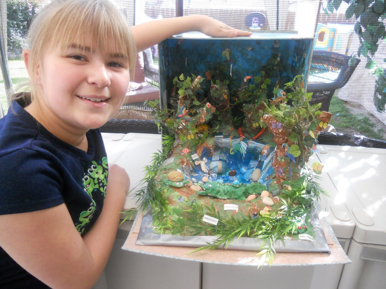 how to make a shoebox diorama of a rainforest - Google Search