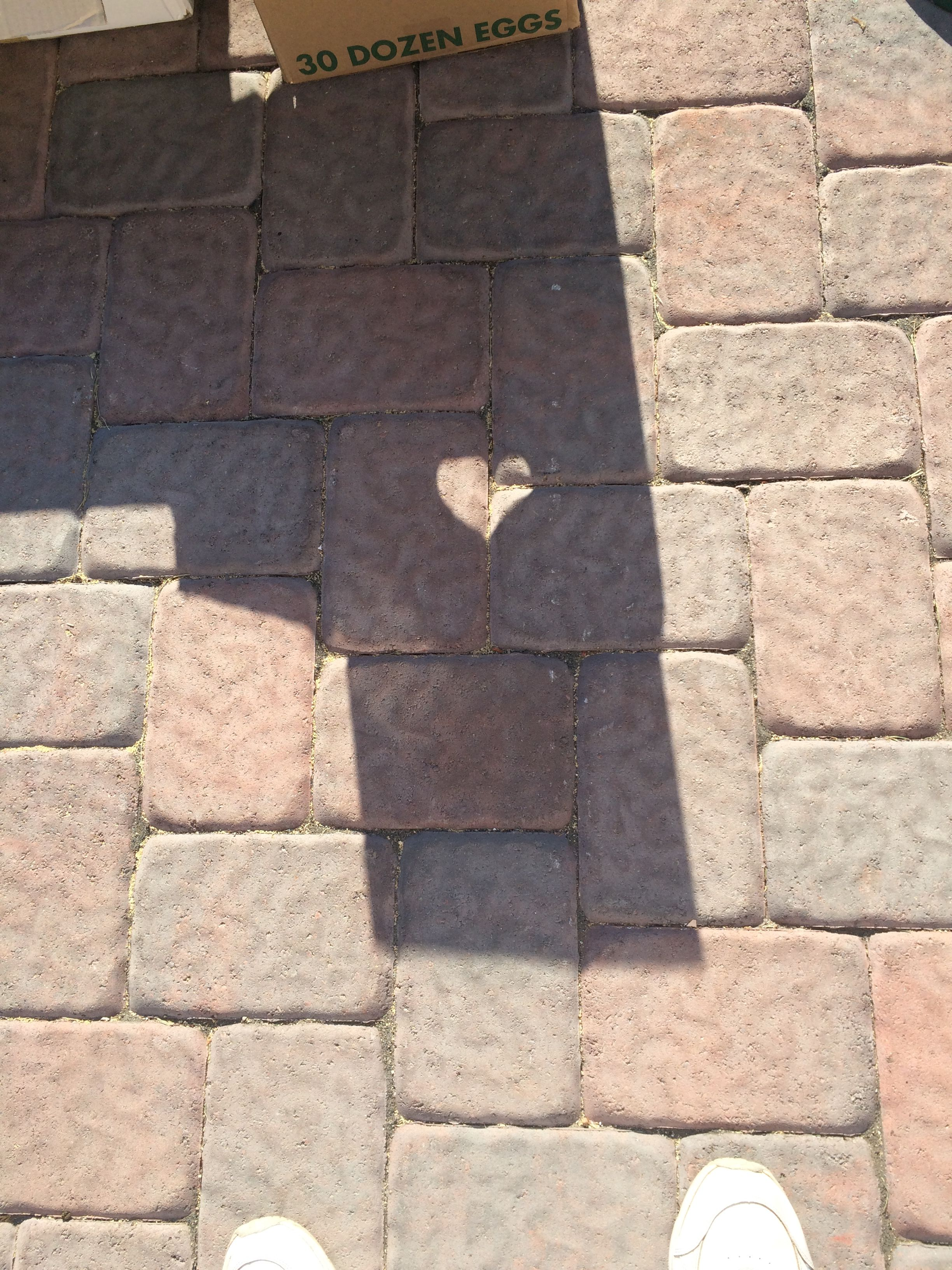 Heart found in the shade of cardboard boxes on a driveway during our garage sale, Saturday, Sept. 19th., 2015