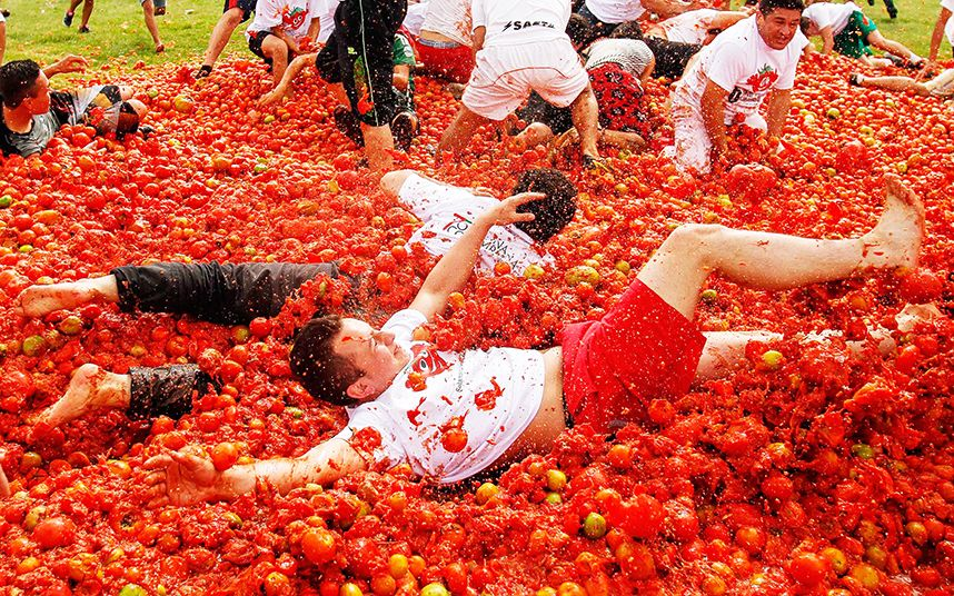 Highlights of La Tomatina Spain's tomato throwing