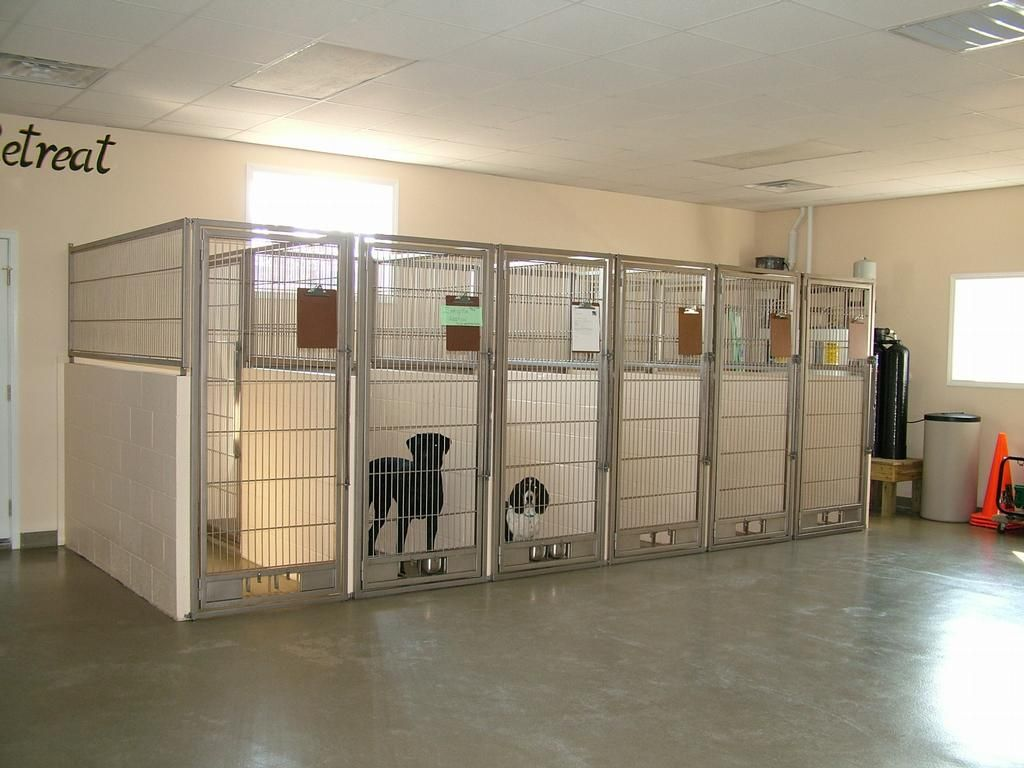 By petdocks veterinary hospital pinteres for Indoor outdoor dog kennel design