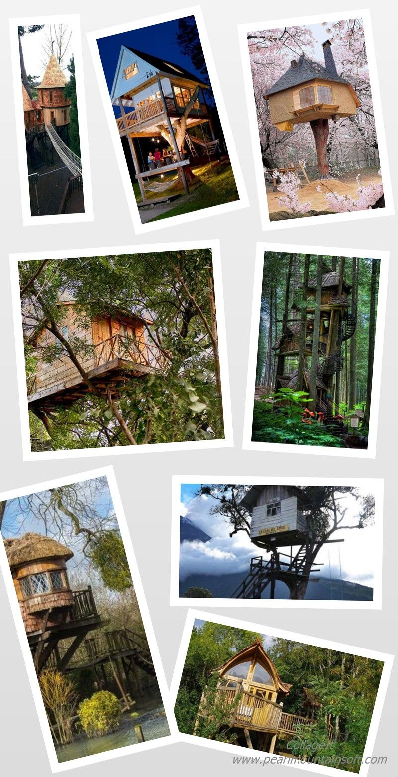 Discover a dwelling within the birds and branches with the top 60 best treehouse ideas. Explore cool wooden wonders and unique backyard designs. #treehousePlayground #treehouseAesthetic #treehouseBedroom #treehouseAccessories #treehouseBridge #treehouseIllustration #treehouseArt #treehouseCool #treehouseArchitecture #treehouseVillage #treehouseMagic #treehouseResort #treehouseJungle #treehouseRomantic #treehouseSketch #treehouseCastle
