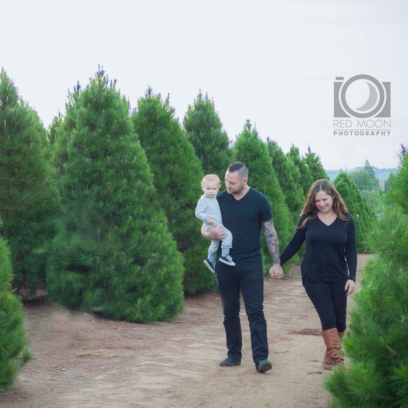 Holiday Portrait Session At Peltzer Pines Christmas Tree Farm In Brea Ca Holiday Portraits Pine Christmas Tree Christmas Tree Farm