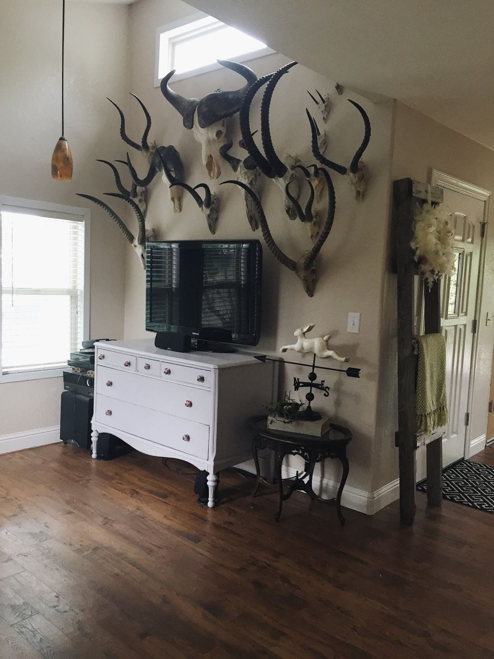 Trophy Room Design Ideas: African Trophy Collection (With Images)