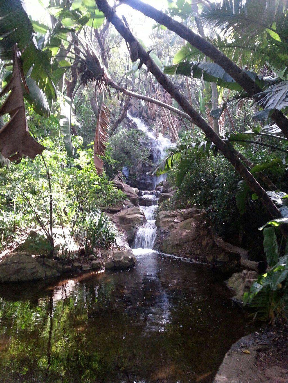 Pretoria National Botanical Garden (South Africa) Address