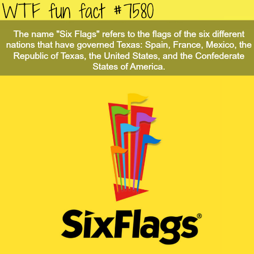Six Flags Wtf Fun Facts Fun Facts Wtf Fun Facts Funny Facts