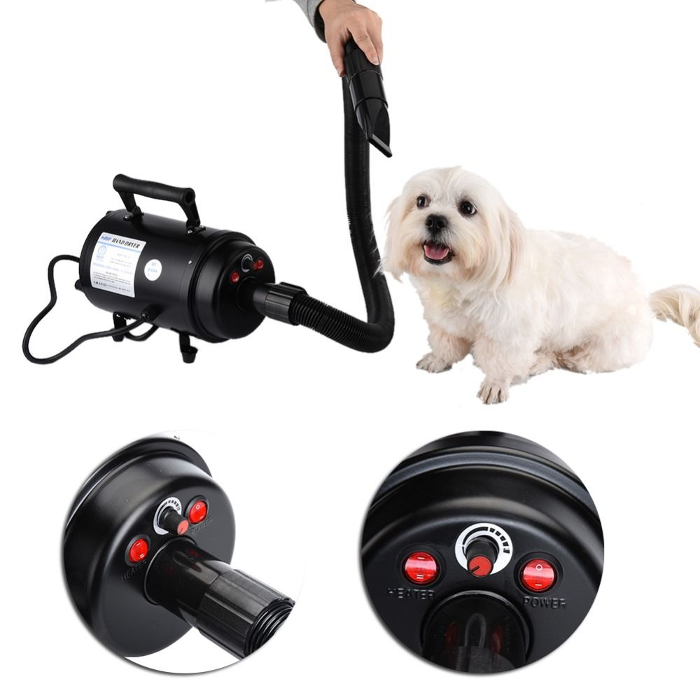 Dog Dryer 2 Speed Ultra Quiet Pet Dog Grooming Hair Dryer 2800w Pets Air Force Commander Hair Dryer Eu Uk Us Au 110 Dog Dryer Dog Grooming Tools Dog Grooming
