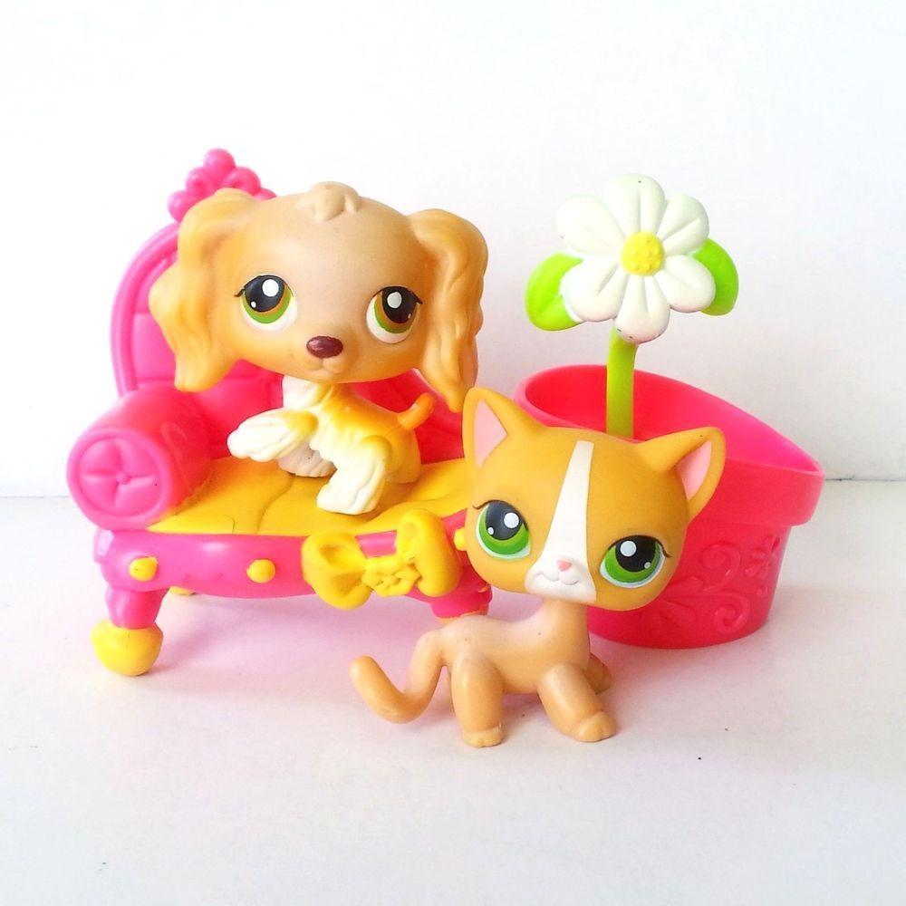 Littlest Pet Shop Cocker 79 Short Hair Cat 72 Lps Popular