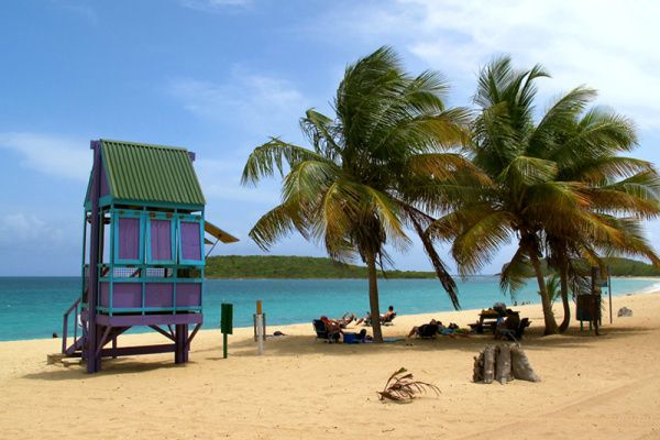 To Do or Not to Do: Vieques   FATHOM Puerto Rico Travel Guides and Travel Blog #fathomontheroad