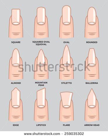 Chart Nail Shapes