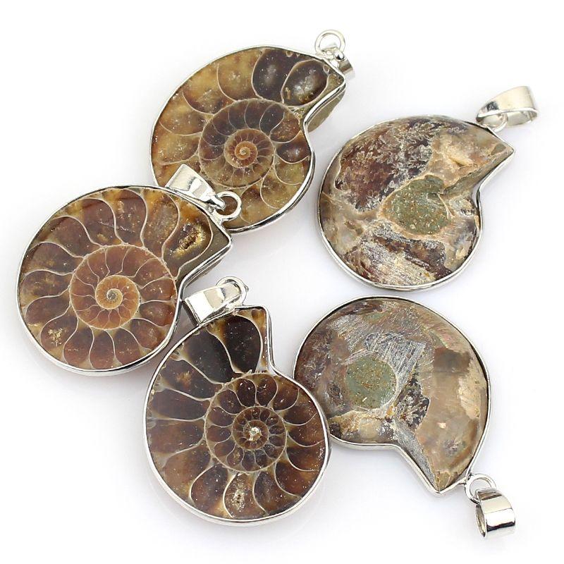 Ammonite pendant exquisite fashion ammonite pendants and free ammonite pendant exquisite fashion price 1188 free shipping beauty3 aloadofball Images