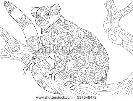 Stock Vector Of Stylized Wild Lemur Madagascar Mammal Animal Freehand Sketch For Adult Anti Stress Coloring Book Page With Doodle And Zentangle Elements