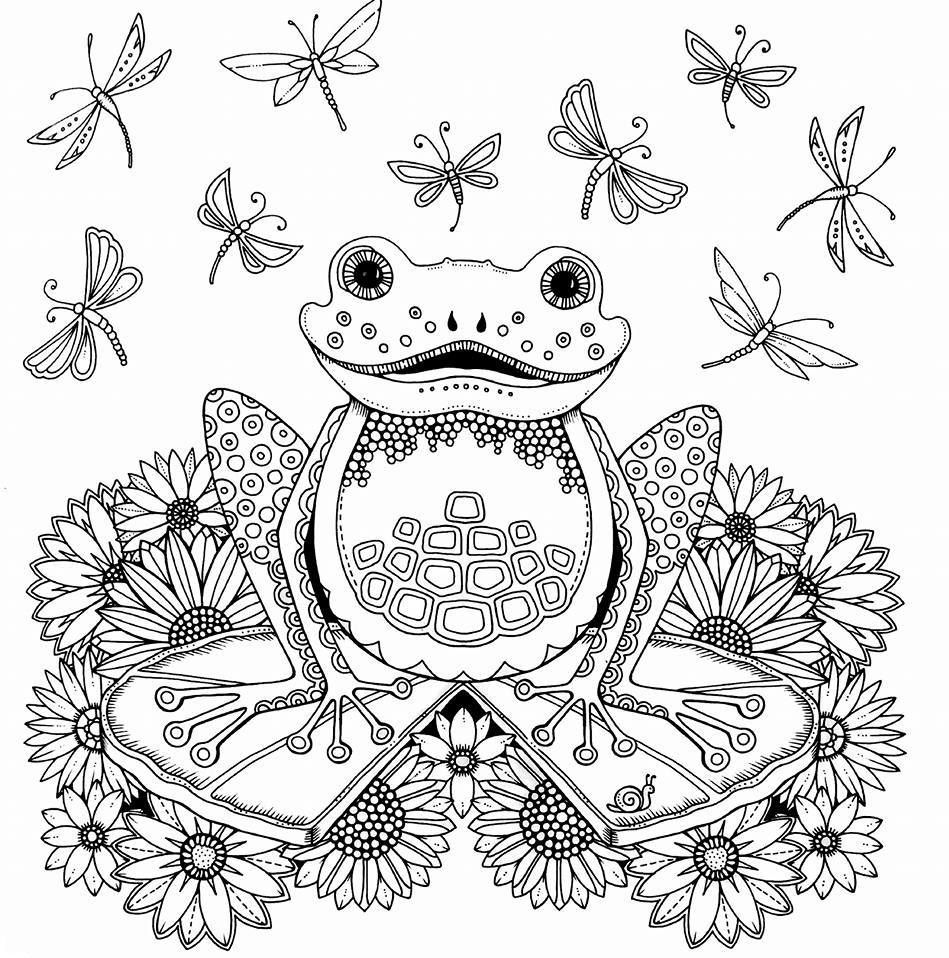 Enchanted Forest   Album   Pinterest   Enchanted, Coloring books and ...