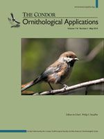 Scatter-hoarding corvids as seed dispersers for oaks and pines: A review of a widely distributed mutualism and its utility to habitat restoration | Bioone.org