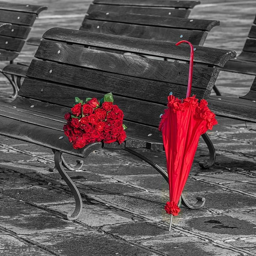 splash of red � just a hint of color red umbrella