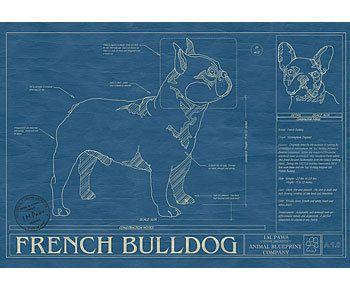 Dog blueprints for the infatuated pet parent french bulldogs dog blueprints for the infatuated pet parent malvernweather Images