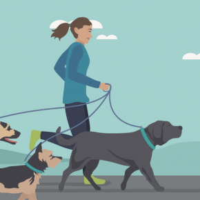 DOS AND DON'TS OF RUNNING WITH YOUR DOG #FWx