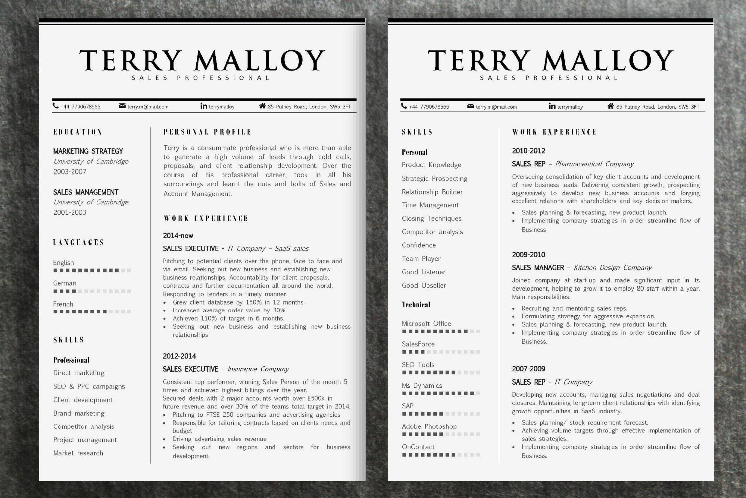 Resume Template Terry minuteshireddreamsMicrosoft