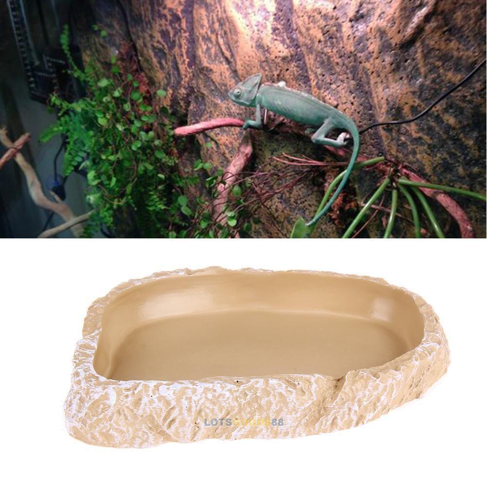 food water dish bowl feeder terrarium decor for reptile
