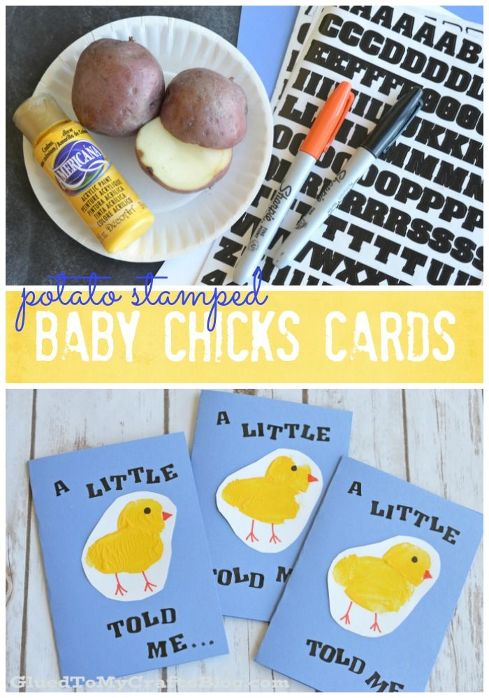 Potato Stamped Baby Chick Cards - Kid Craft
