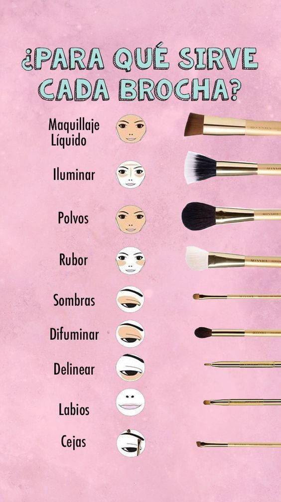This is what every makeup brush is for