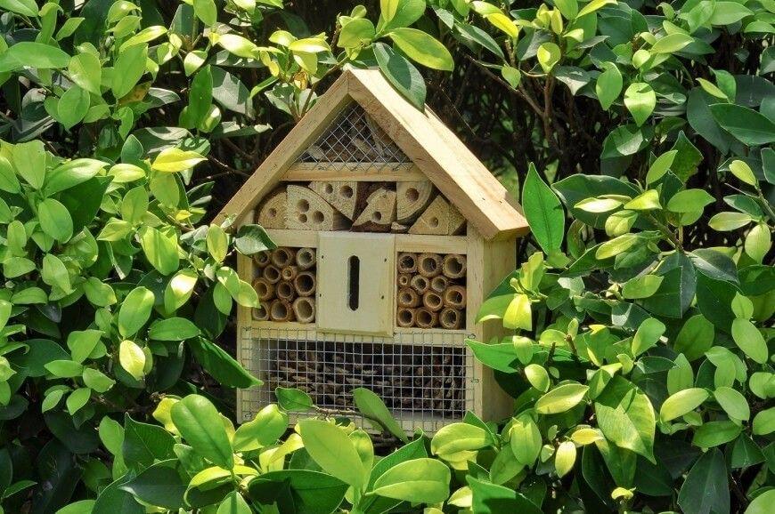 Backyard Bee Hive 27 hinterhof bee hive ideen amazon   handmade at amazon   pinterest