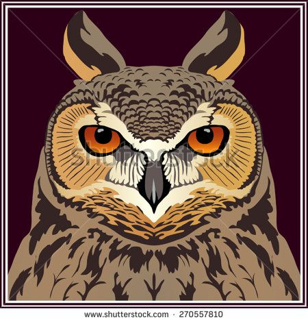 Stock vector. Head of an owl (Long-eared owl). Totem, tattoo design for t-shirt, logo, bag, postcard, poster, illustration and so on. - stock vector