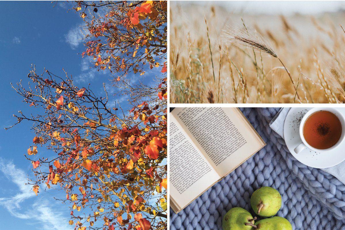 Free Printable Thankfulness Worksheets For Autumn