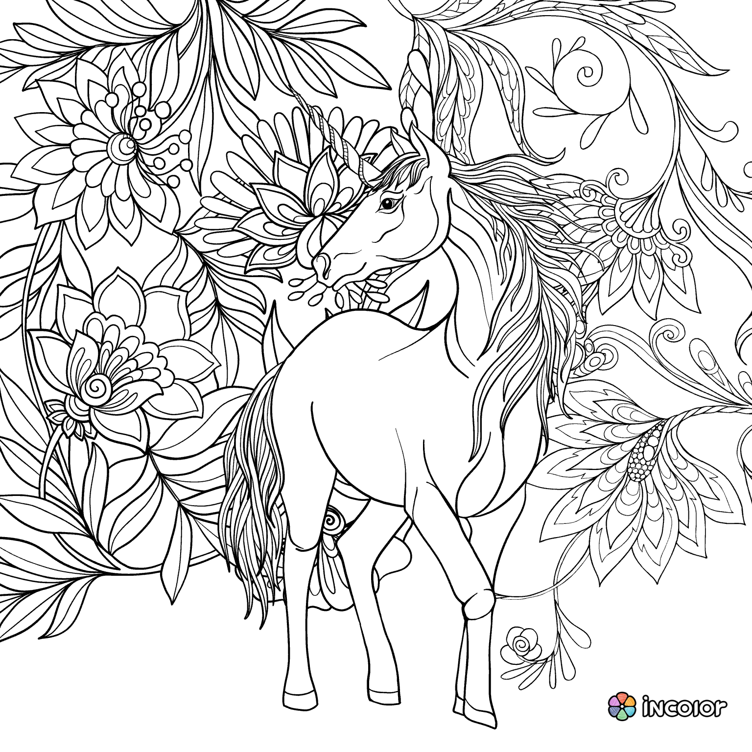 Pin by barbara on coloring horse zebra pinterest