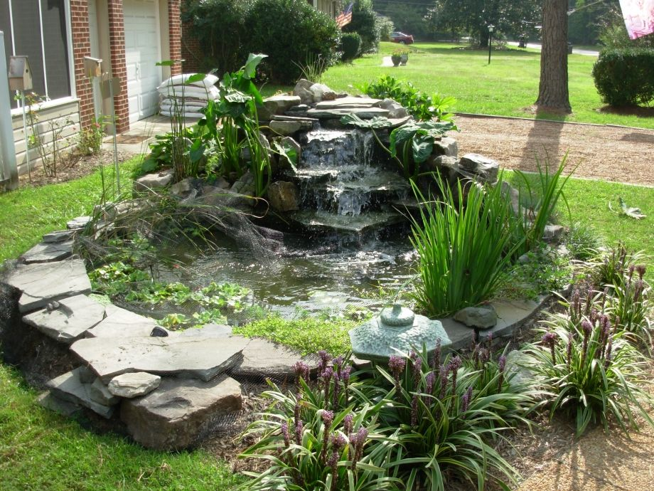 Small backyard ponds and waterfalls front yard waterfall for Small yard ponds