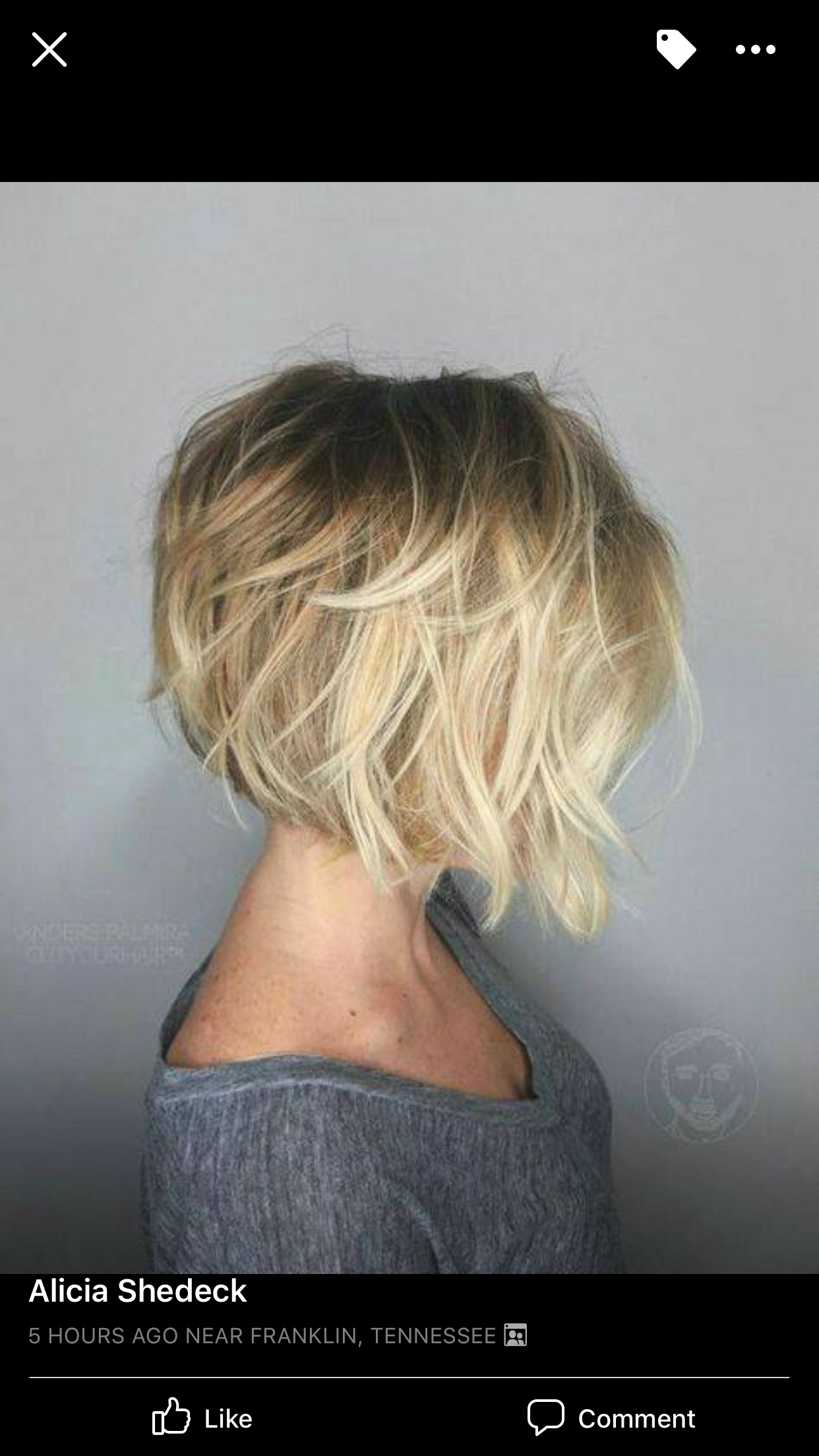 Pin by karin barry on short hair pinterest hair hair styles and