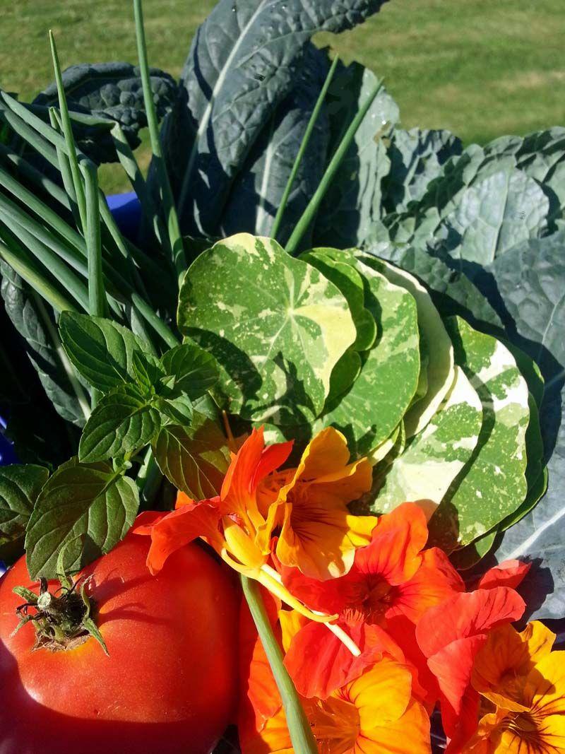 Fixin's for a yummy garden salad!