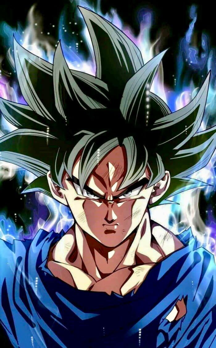 Dragon Ball Super Ultra Instinct Goku Anime Dragon Ball Super Dragon Ball Goku Dragon Ball Super Goku