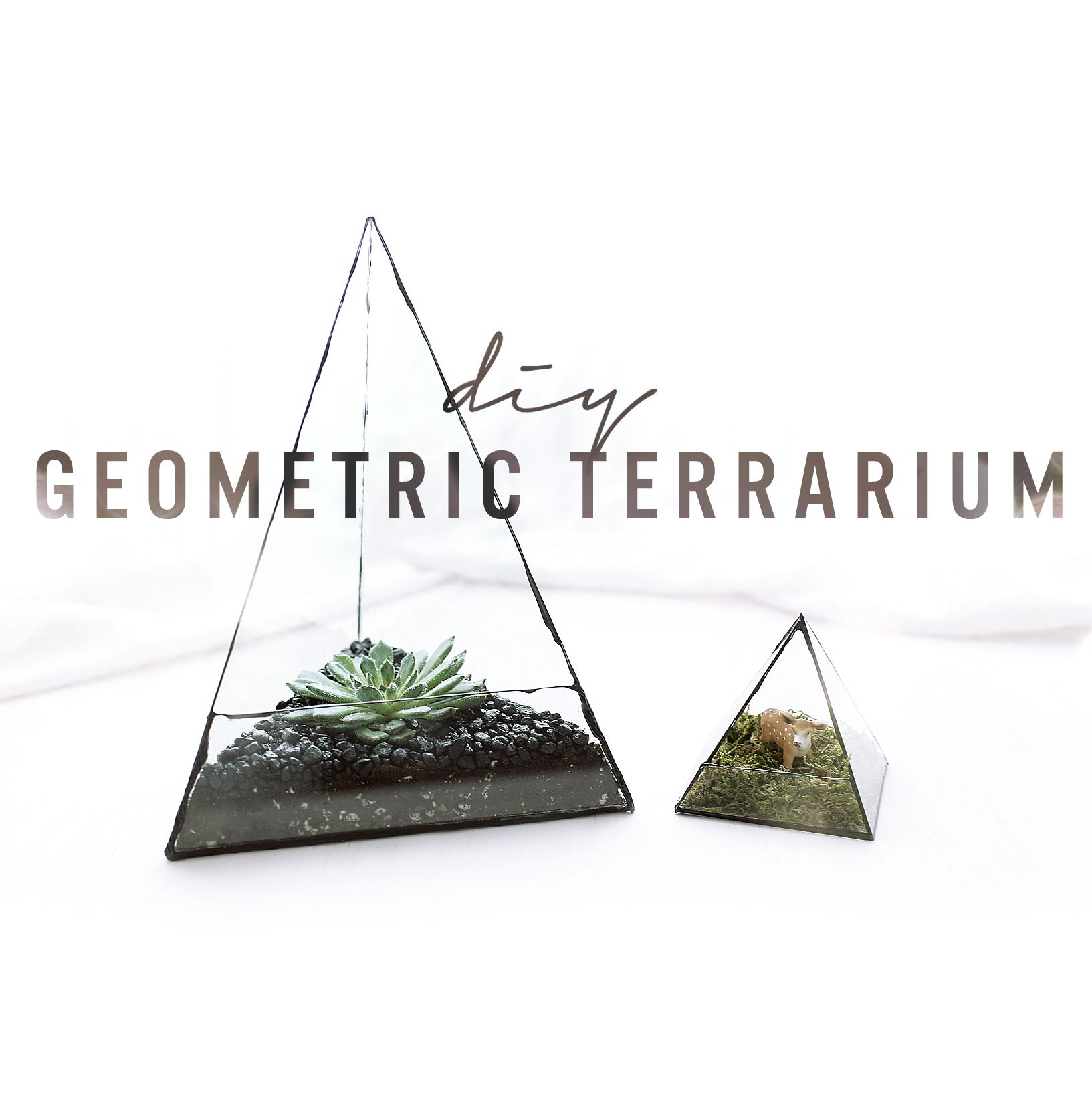 Make These Super Geometric Glass Terrariums Using Old Picture Frames