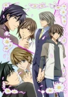anime gay junjou romantica streaming sub ita