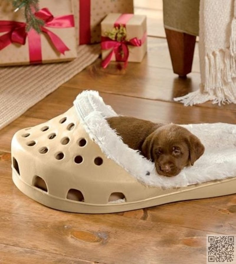 bed best puppy buyers complete jug and reviews guide uk dog beds