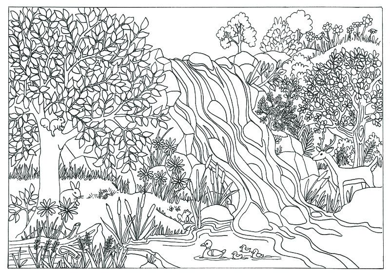 Printable Waterfall Nature Scene Coloring Page