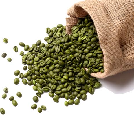 chicco di caffè verde nero