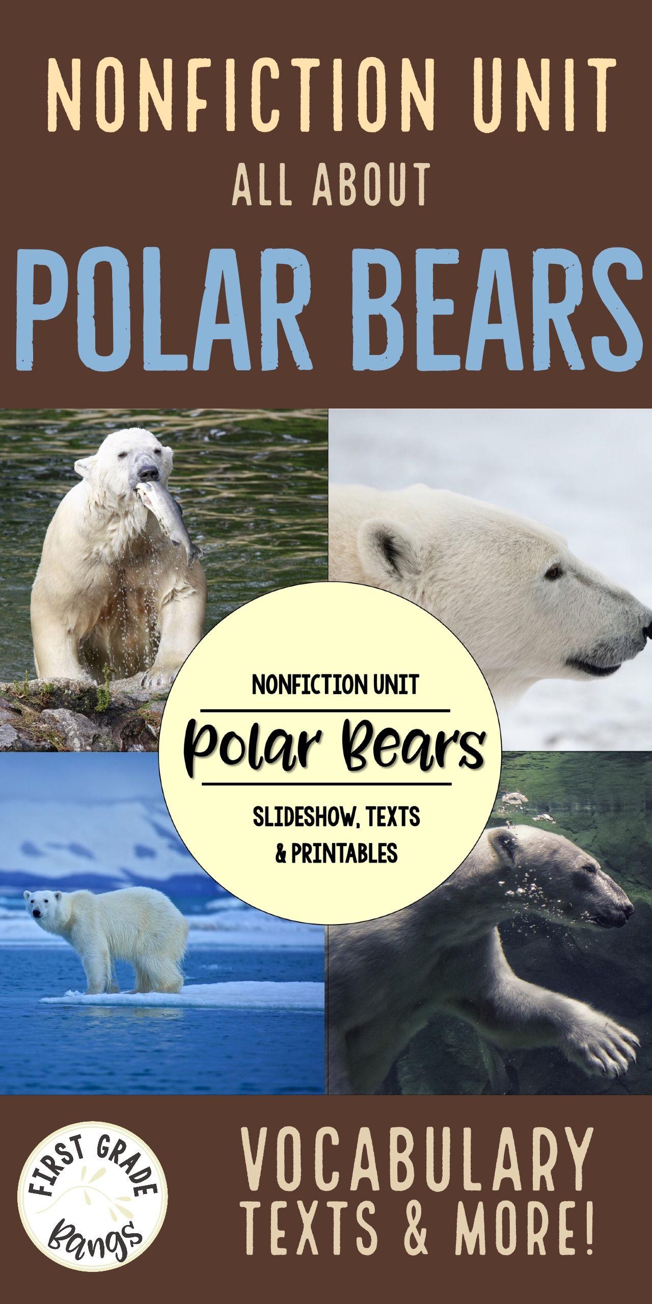 Polar Bears Nonfiction Close Reading Amp Visual Vocabulary