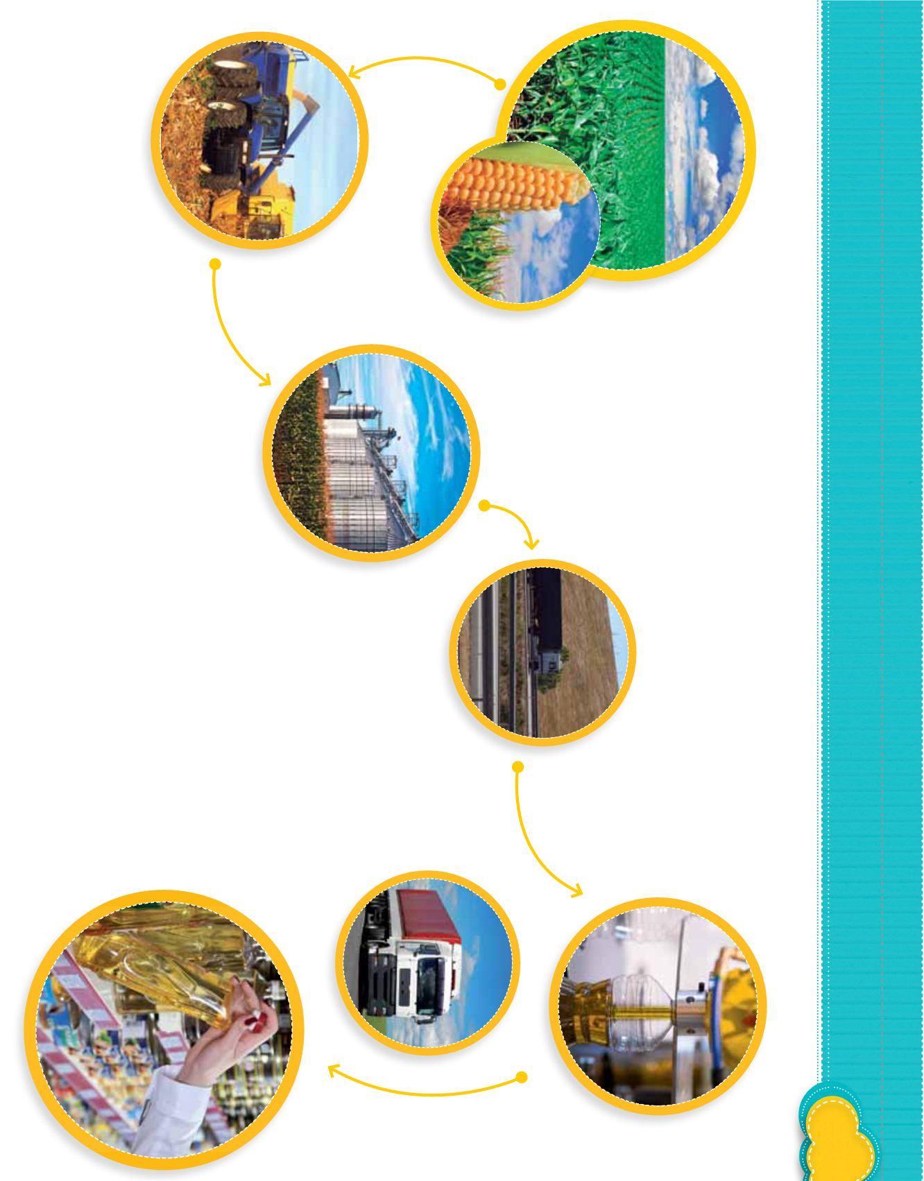 Circuito Productivo : El proceso productivo del ónix todos los chicos en la red