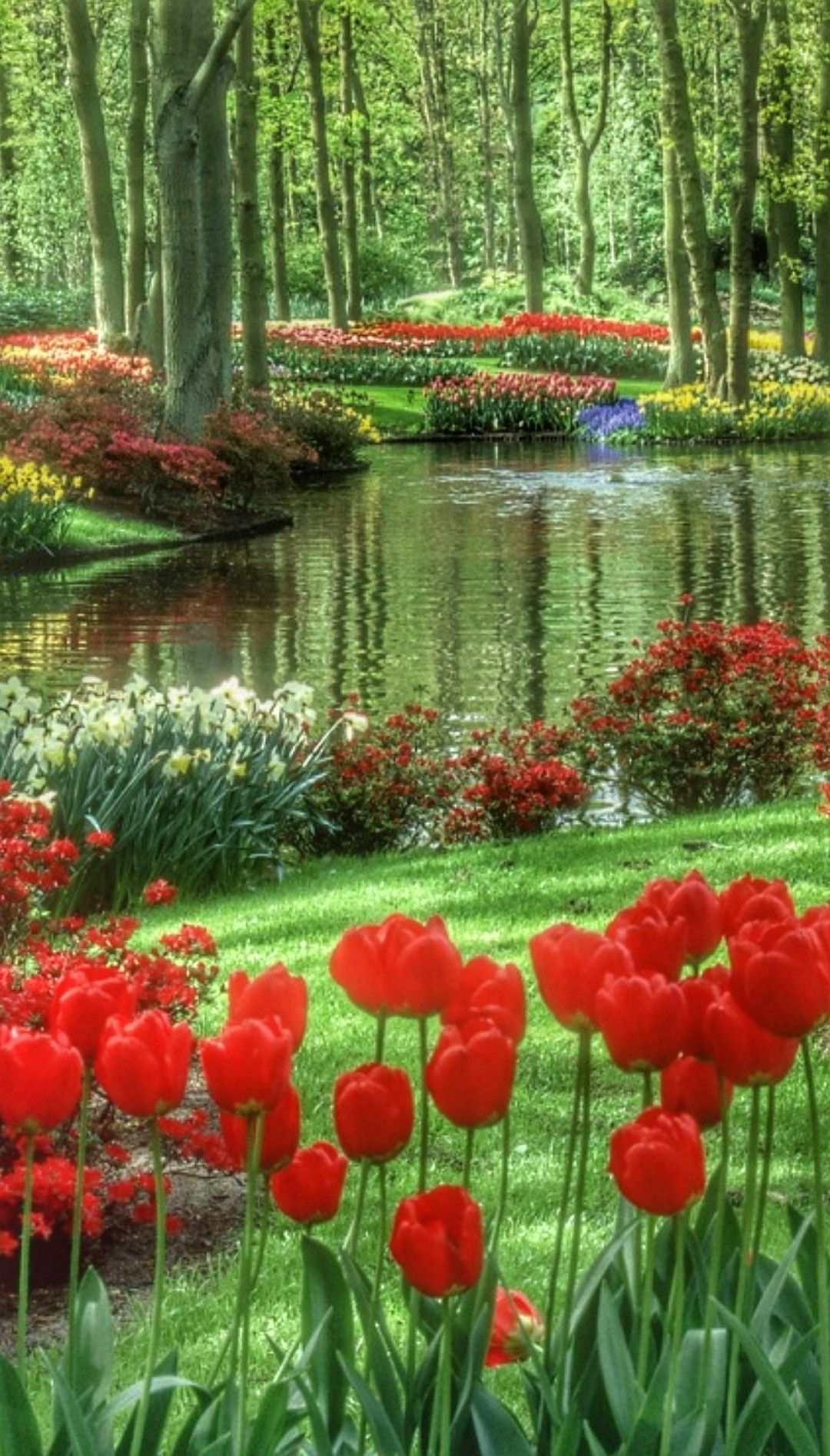 Hermosas Flores Wichi 2 Cosas De Este Mundo Material Fotografia