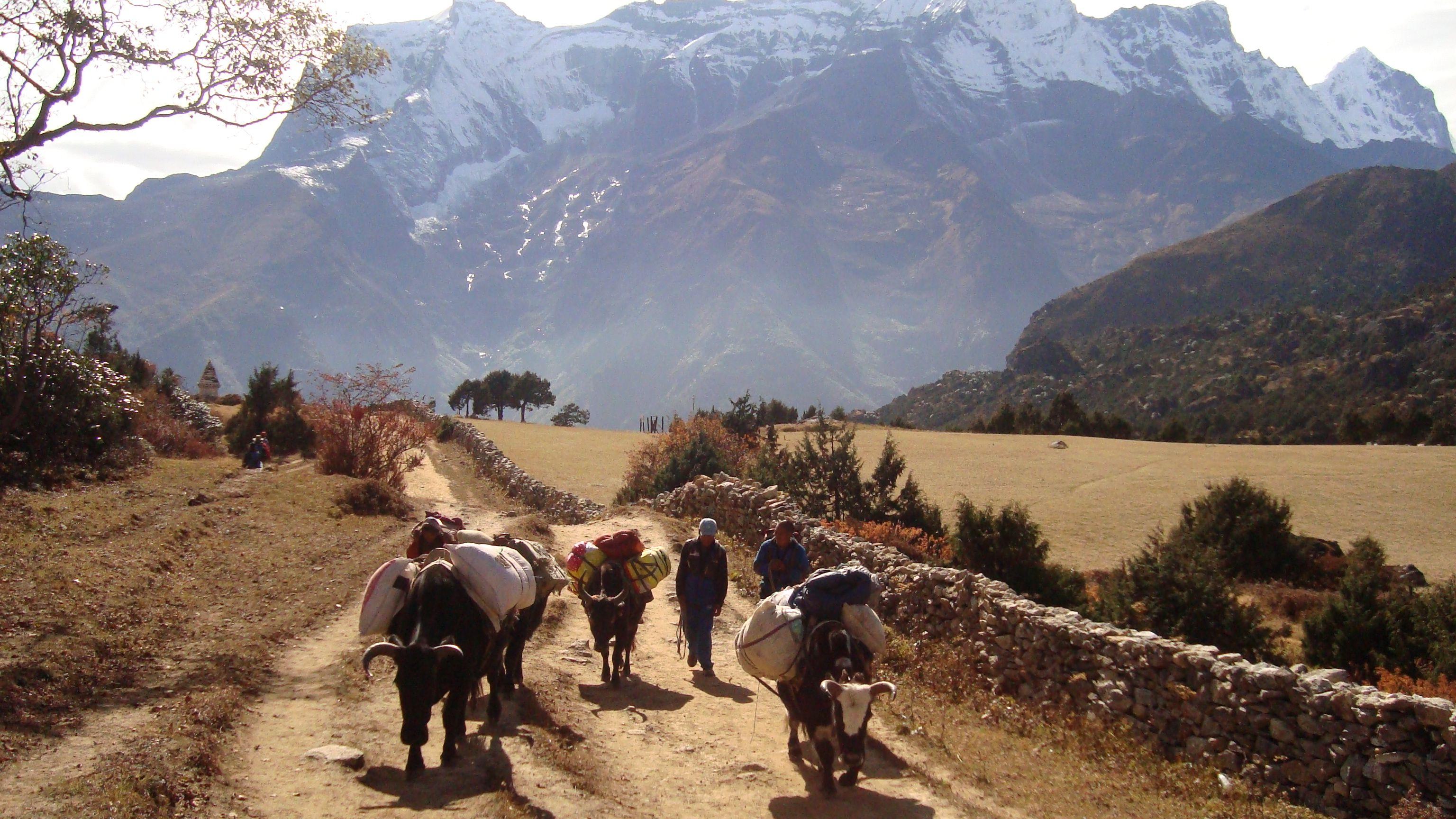 Everest Base Camp Trek  #Nepal #OutdoorEthics