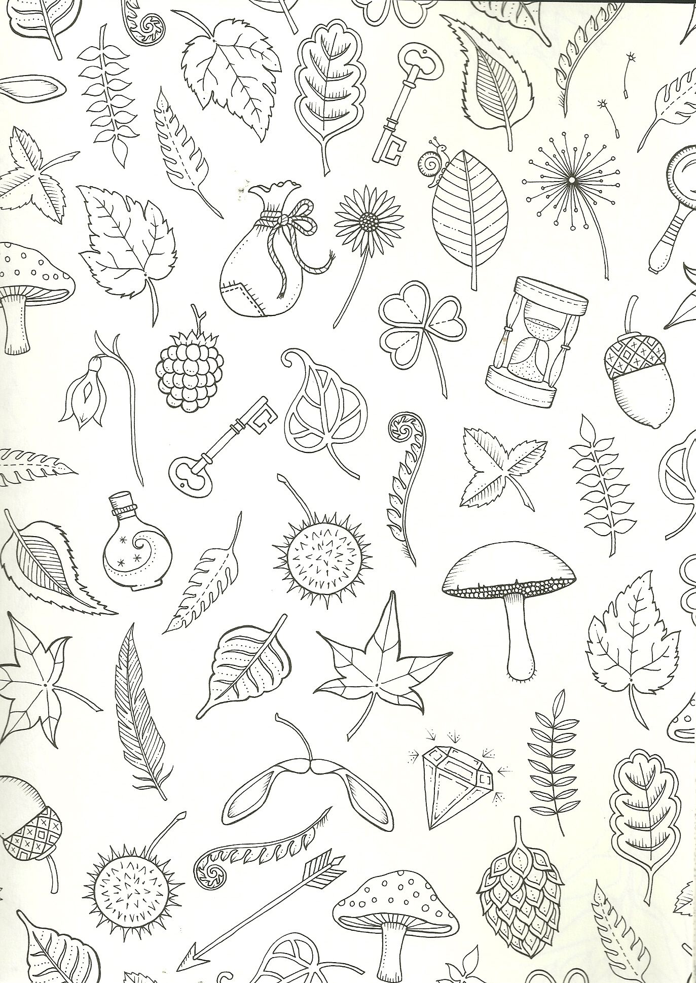 Random Things Coloring Page For Adults Enchanted Forest Coloring Book Enchanted Forest Coloring Johanna Basford Coloring Book