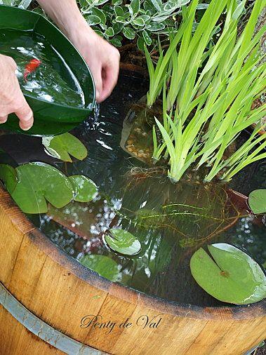 TUTO tonneau- bassin dans le jardin. Keg/barrel water garden (1 ...