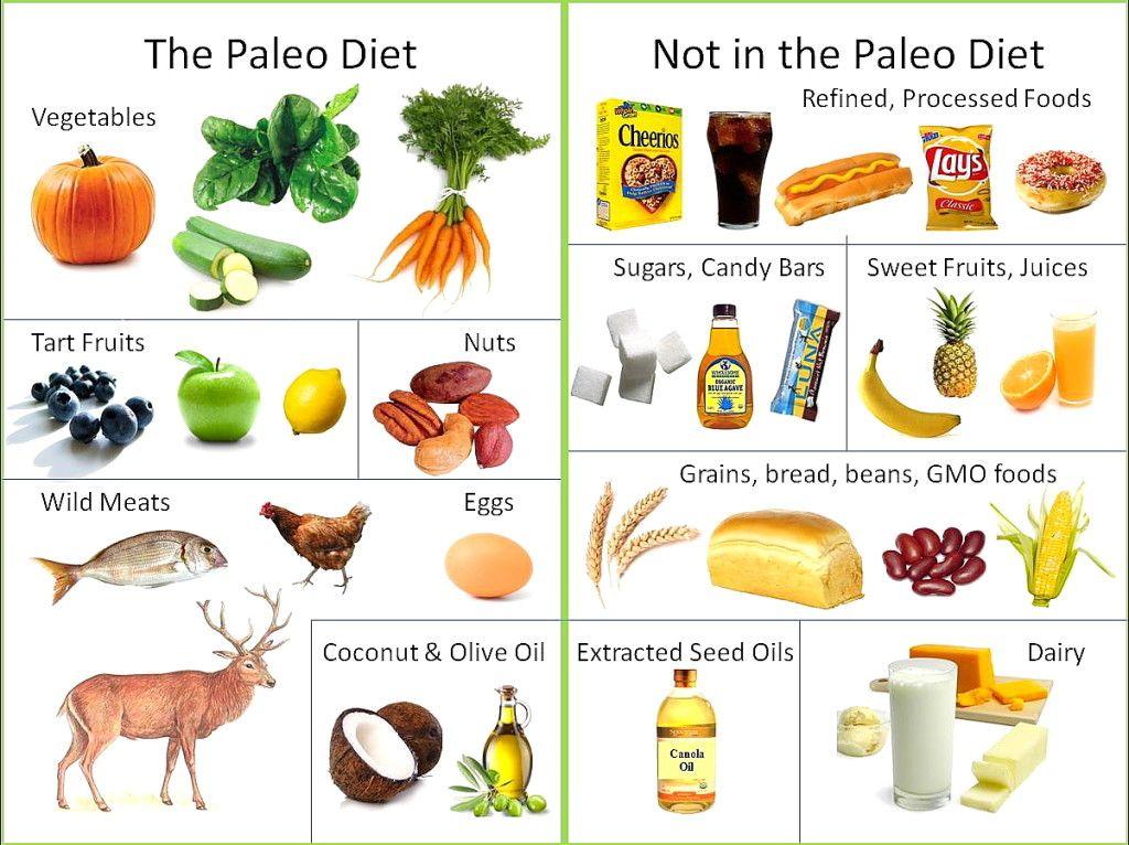 Палео диета что можно и что нельзя