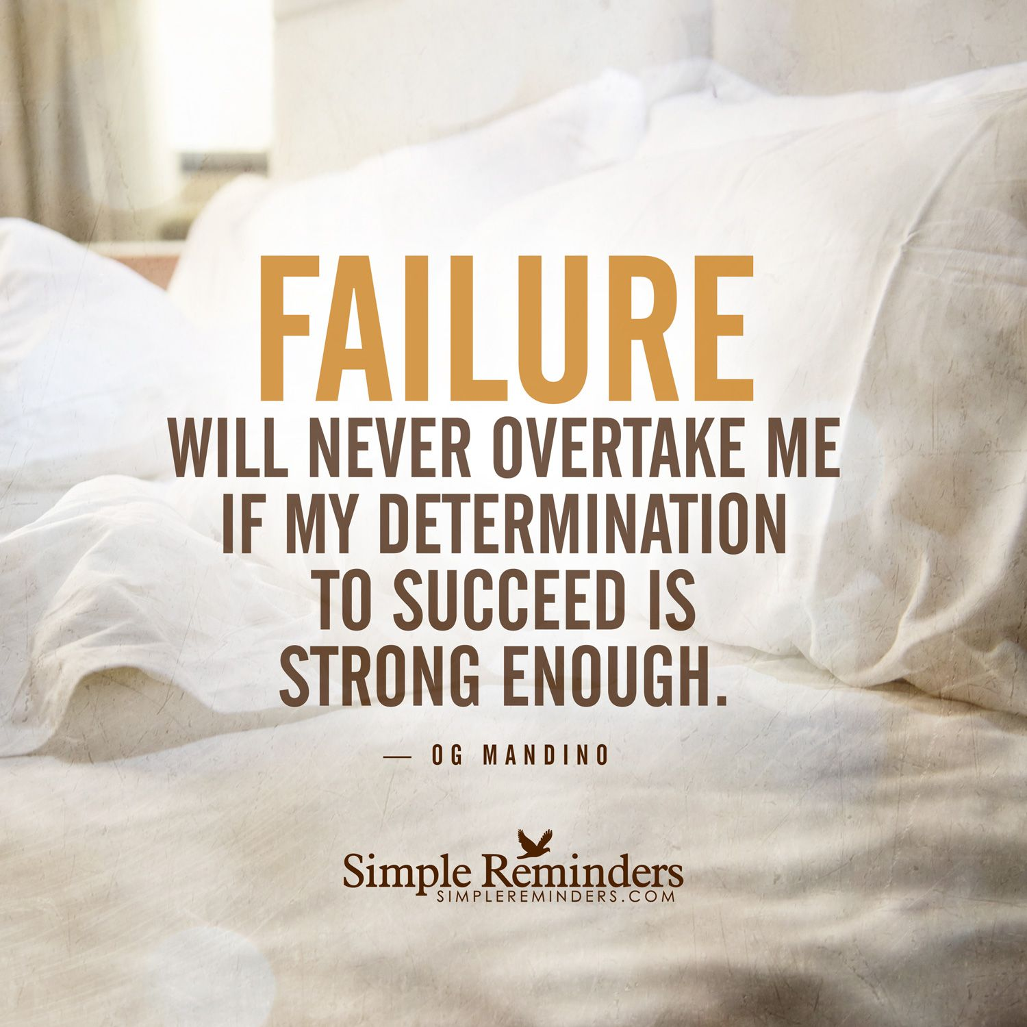 Inspirational Quotes About Failure: Determination To Succeed Failure Will Never Overtake Me If