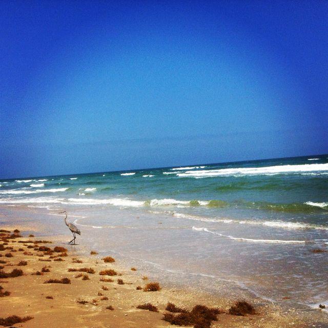 New zealand nudist beach was