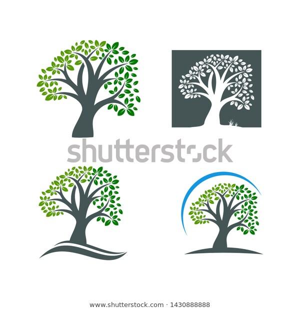 Tree Logo Template Nature Icon Design Stock Vector